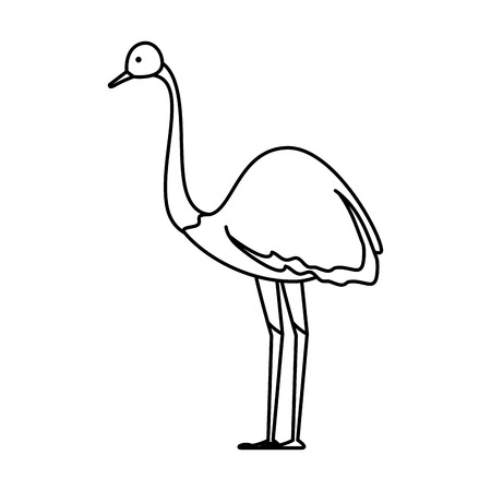 Wilder Strauß Vogel Charakter Vektor Illustration Design Vektorgrafik