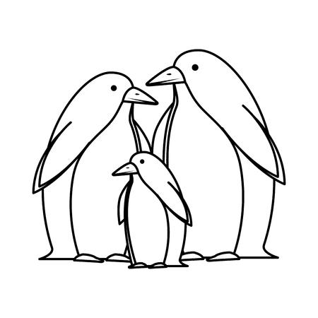 cute penguins birds characters vector illustration design Illustration
