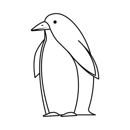 cute penguin bird character vector illustration design