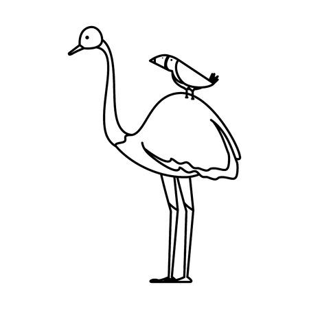 wild ostrich bird character vector illustration design Illustration