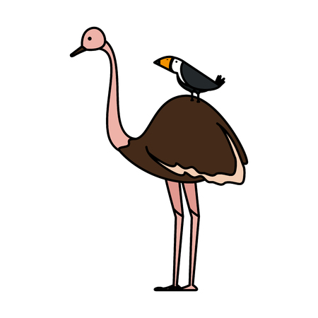 wild ostrich bird character vector illustration design  イラスト・ベクター素材