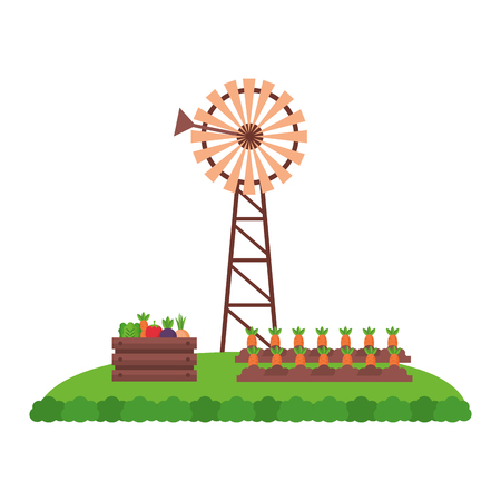 windmill carrots planting vegetables farm fresh vector illustration