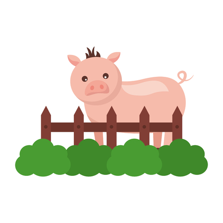 pig fence grass farm animal vector illustration