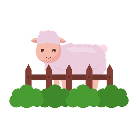 sheep fence grass farm animal vector illustration Stock Vector - 124941396