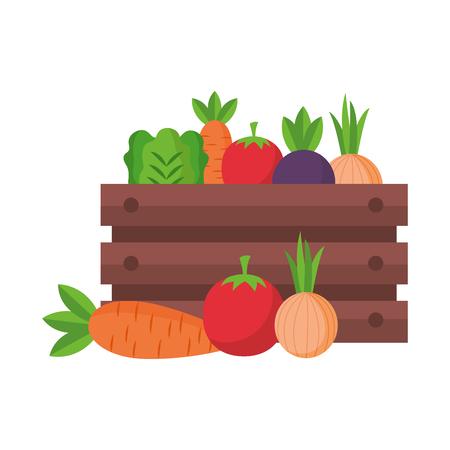 vegetables on box farm fresh vector illustration Ilustrace
