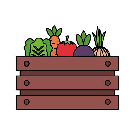basket with vegetable farm fresh vector illustration Ilustrace