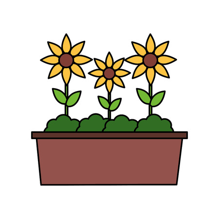 potted flowers nature on white background vector illustration Illustration