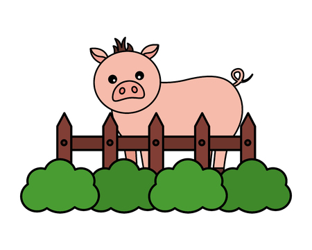 pig fence grass farm animal vector illustration Stock Vector - 124907414
