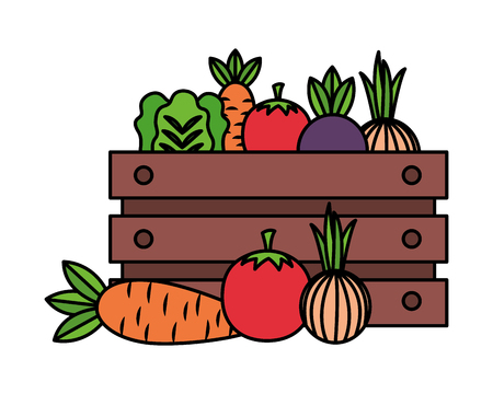 vegetables on box farm fresh vector illustration Illustration