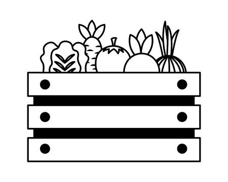 basket with vegetable farm fresh vector illustration Stock Vector - 124907430