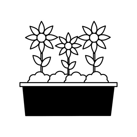 potted flowers nature on white background vector illustration Çizim