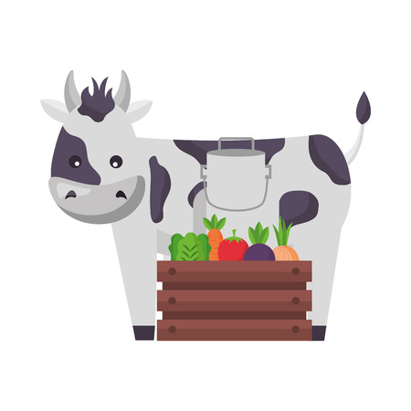cow milk can and vegetables farm vector illustration Çizim