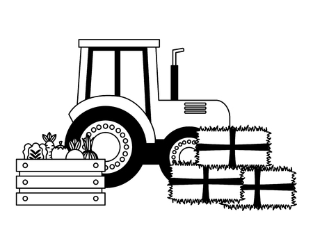 tractor truck bales of hay and vegetables vector illustration