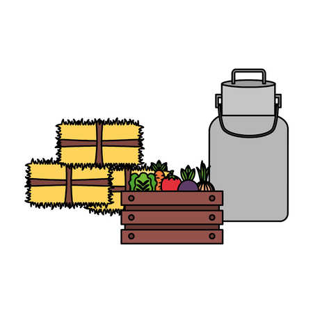 vegetables bales of hay and milk can farm vector illustration
