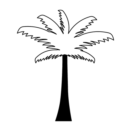 palm tree tropical on white background