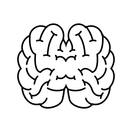 top view human brain on white background vector illustration