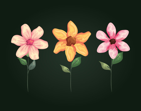 natural flowers with exotic petals and leaves vector illustration