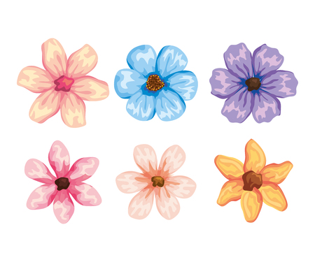 set tropical flowers plants with exotic petals vector illustration