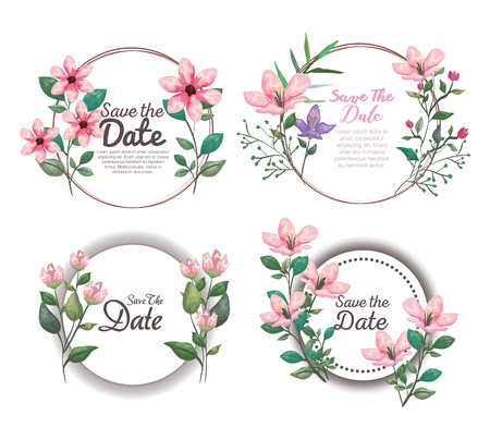 set botanic cards with exotic flowers and tropical leaves vector illustration