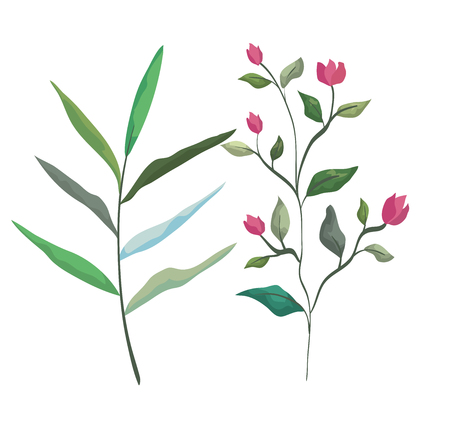 set flowers plants and branches leaves vector illustration