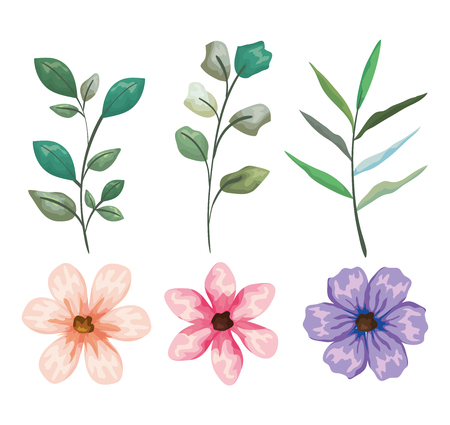 set exotic flowers and leaves plants vector illustration
