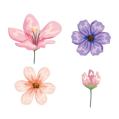 set exotic flowers palnts with petals style vector illustration