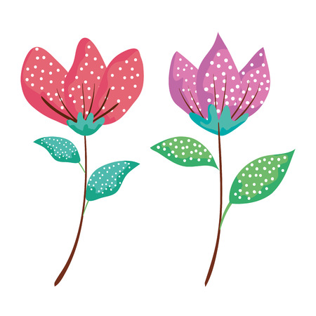 set exotic flowers plants with leaves vector illustration