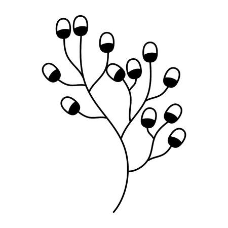 branch berries fruit on white background vector illustration Çizim