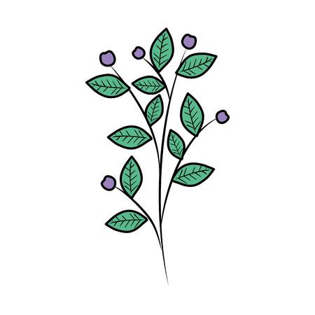 Rama con hojas de plantas, diseño de ilustraciones vectoriales Ilustración de vector