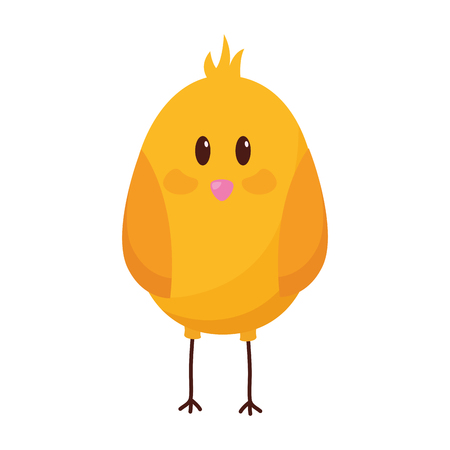 cute chick bird on white background vector illustration