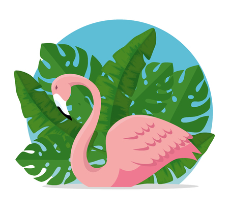 tropical flemish with exotic leaves plants vector illustration 向量圖像