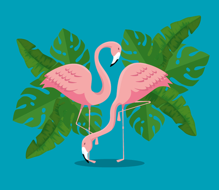 tropical flamingos with exotic leaves plants vector illustration