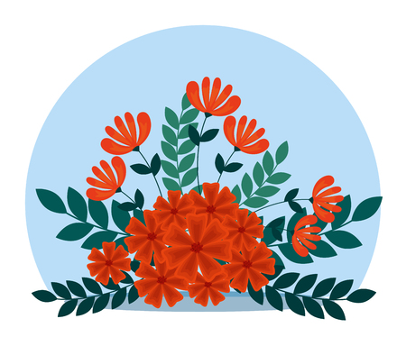 exotic flowers with branches leaves plants vector illustration Çizim