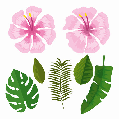 set tropical flowers with branches leaves vector illustration