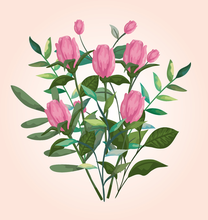 beauty roses with branches leaves plants vector illustration