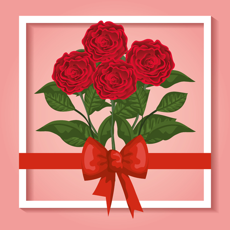 beauty roses plants with leaves and ribbon bow vector illustration