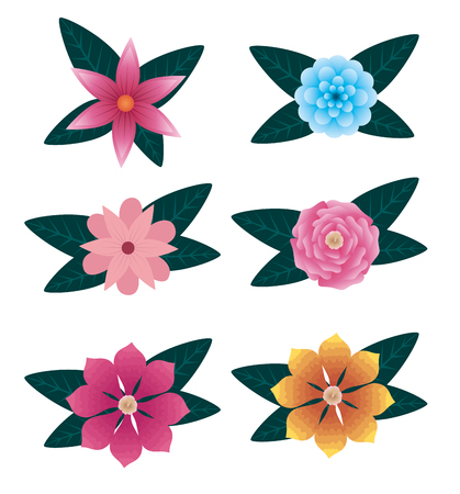 set natural flowers and roses with leaves vector illustration