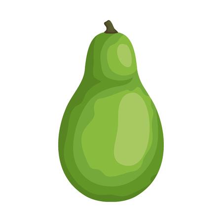 fresh avocado vegetable icon vector illustration design