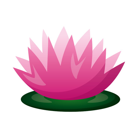 lotus flower leaf decoration on white background vector illustration design