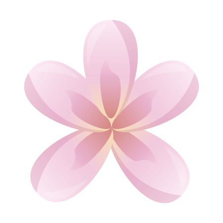 frangipani flower decoration on white background vector illustration Stock Vector - 124247245