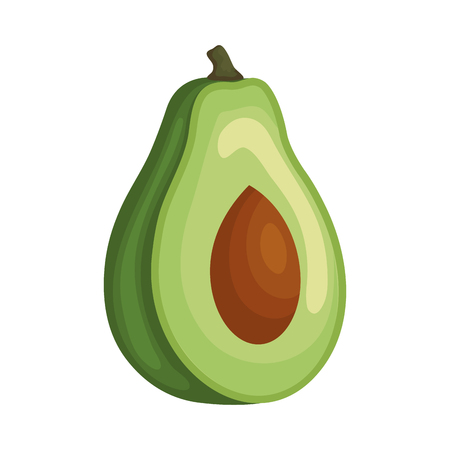 fresh avocado vegetable icon vector illustration design