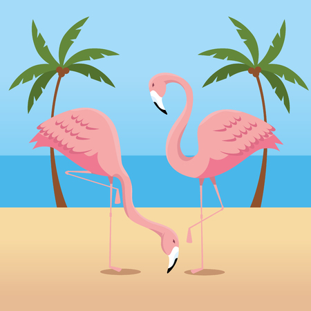 tropical flamingos with palms trees in the beach vector illustration