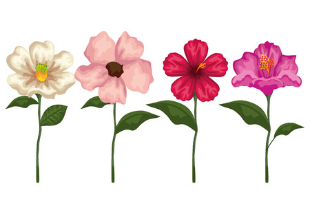 set tropical flowers plants with exotic leaves vector illustration