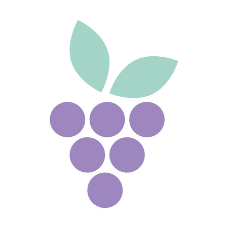 fresh grapes fruits icon vector illustration design 向量圖像