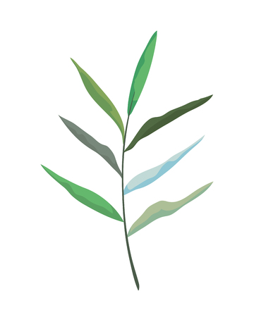 branch with leafs plant vector illustration design Ilustracja