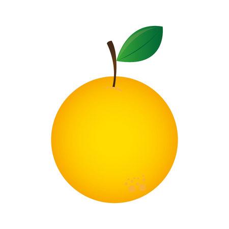 orange fresh fruit icon vector illustration design 向量圖像