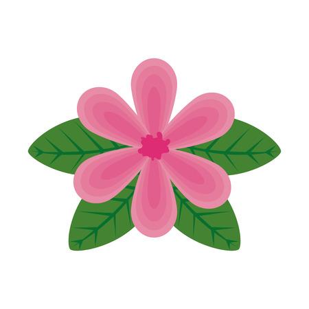 flower with leafs icon vector illustration design Archivio Fotografico - 120458549