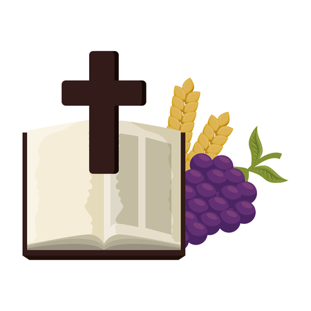 holy bible with cross and grapes vector illustration design Illustration