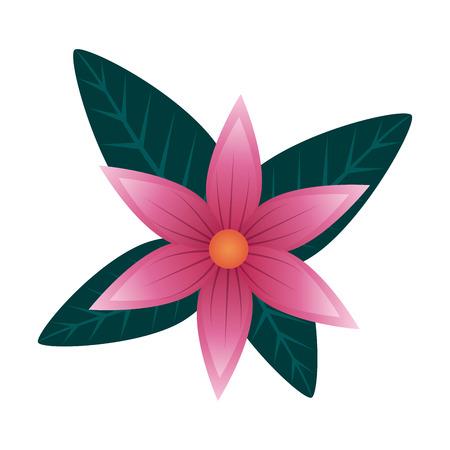 flower with leafs icon vector illustration design Archivio Fotografico - 123548053