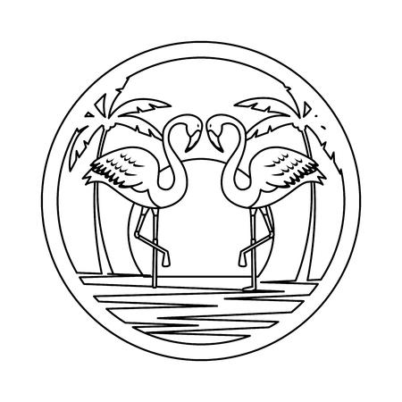elegant flamingos birds couple on the beach vector illustration design